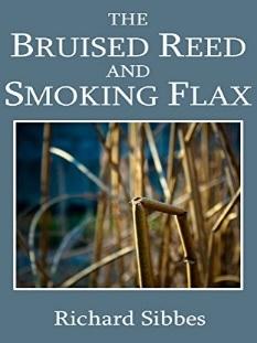 bruised-reed-book